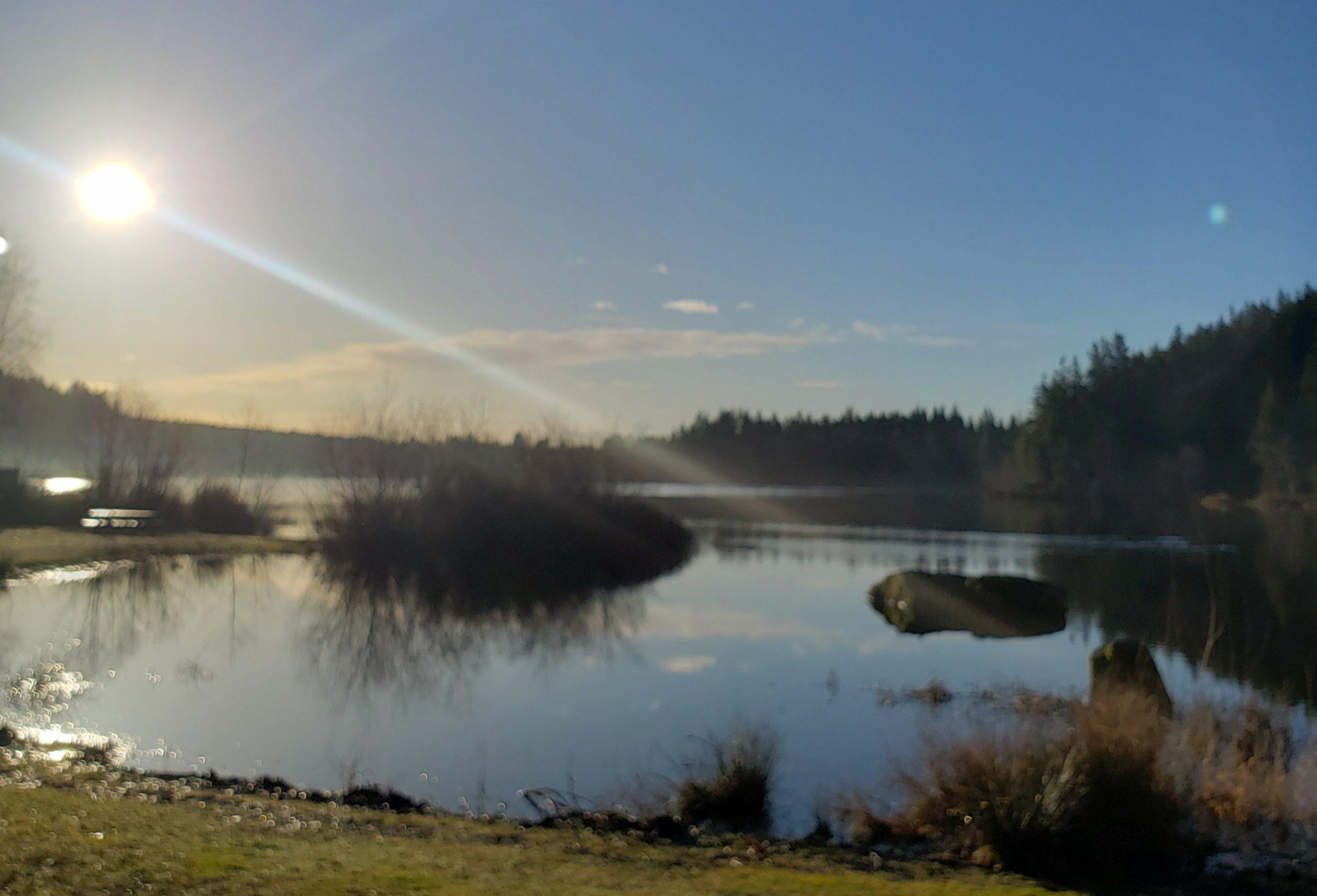 cranberry-lake-crop